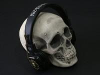 SkullWithAllanPoeRealSmall