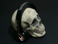 skullwithpinupcar